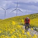 Cycling amateurs