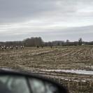 Omloop - on the road